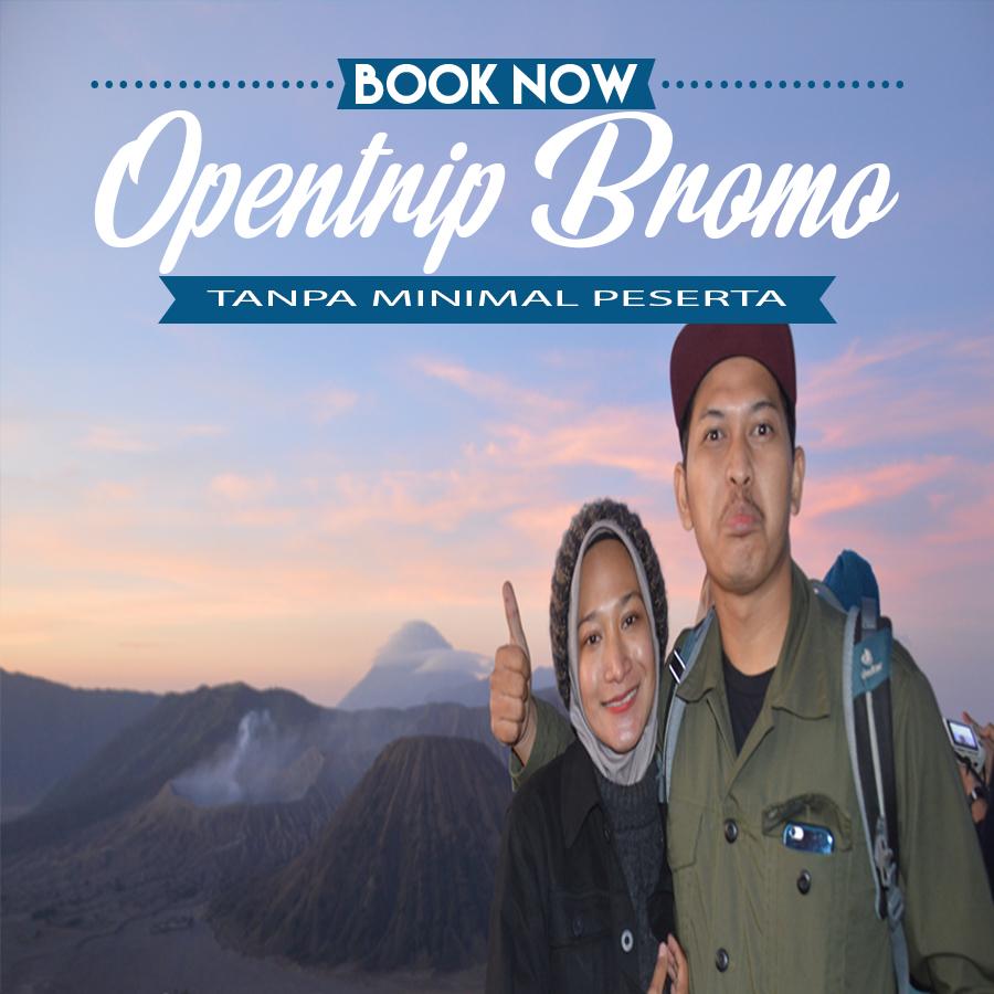 Wisata ke bromo tanpa travel